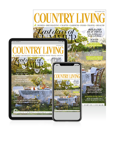 Country Living Digital